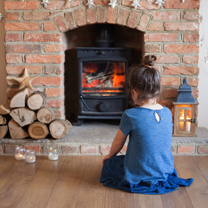 Hardwood logs in fireplace